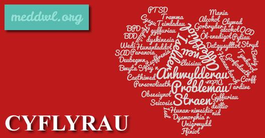 cyflyrau1