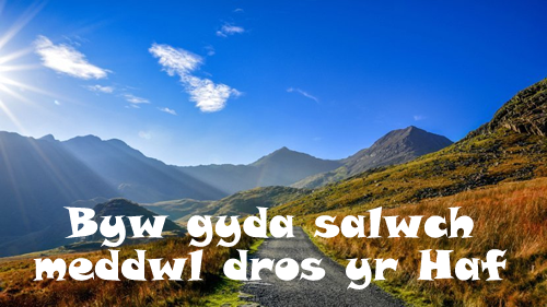 salwch-haf1
