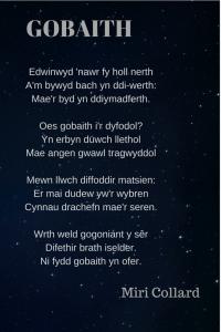Cerdd fuddugol Cadair y Dysgwyr, Eisteddfod Genedlaethol Meifod 2015. Bardd: Miri Collard